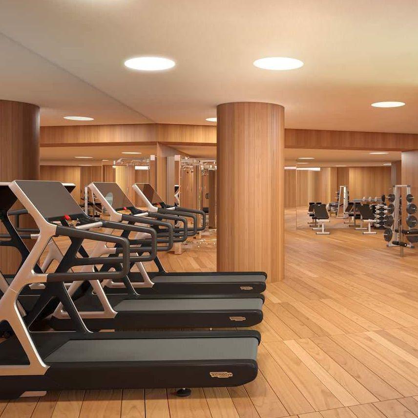 Gym por un año