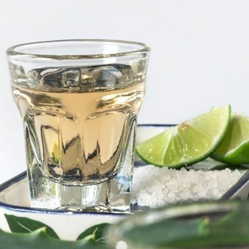 Cata de Mezcal y Tequila a domicilio