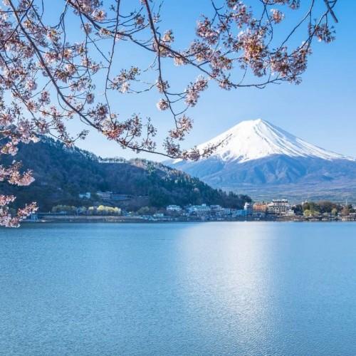 Excursión al Monte Fuji