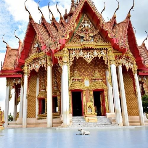 Krabi y sus Templos